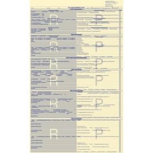 Pflegeanamnese AEDL mit Vorgaben ohne Biografie