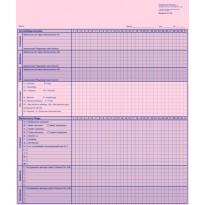 Grundpflege-/Behandlungspflegenachweis