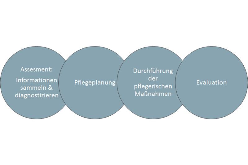 Pflegeprozessmodell2