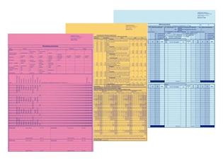 Papiergestützte Pflegeplanung